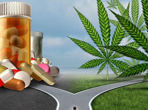 Using Medical Marijuana To Replace Painkillers